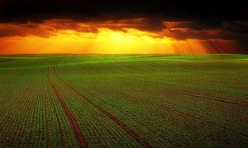 Presudna važnost prilagodbe klimatskim promjenama za poljoprivredu u Europi