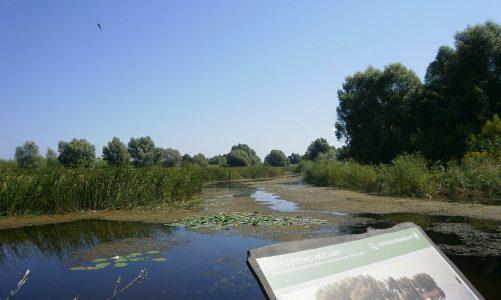 Park prirode Kopački rit – srce Podunavlja