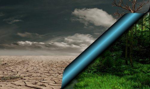 Kako internet casina koriste okolišu