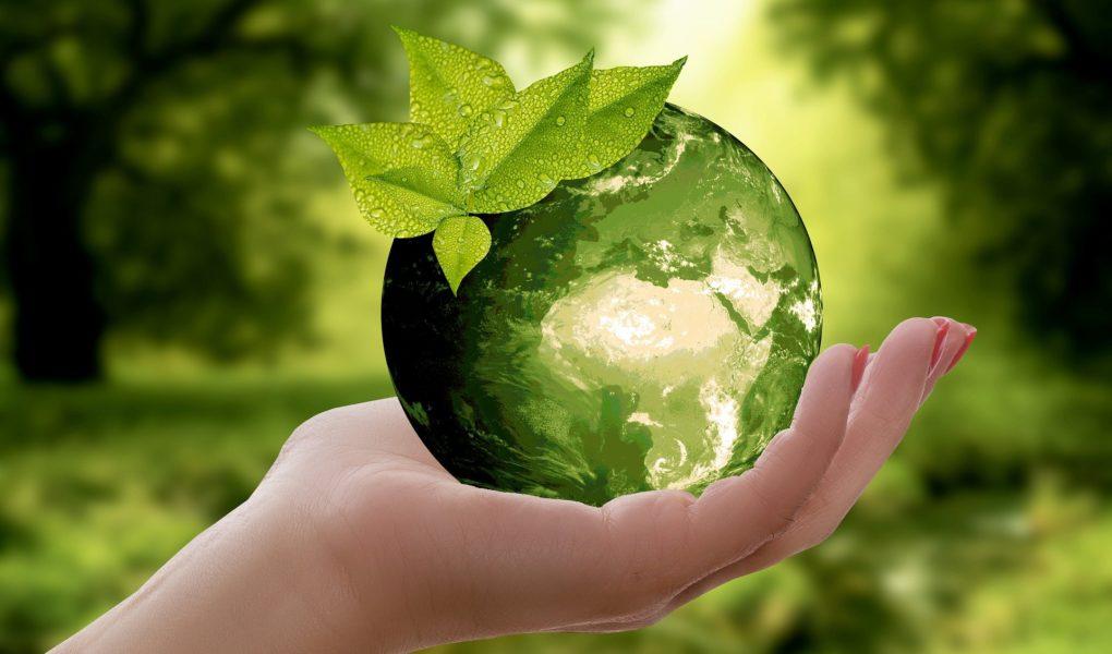 Korisni savjeti kako smanjiti utjecaj na okoliš dok surfate Internetom